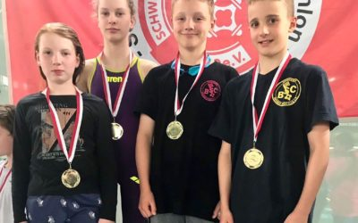 Mixed-Staffel stellt zwei neue Landesrekorde auf